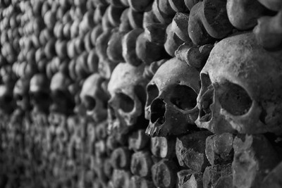 Skulls Stacked At The Catacombes - Paris, France