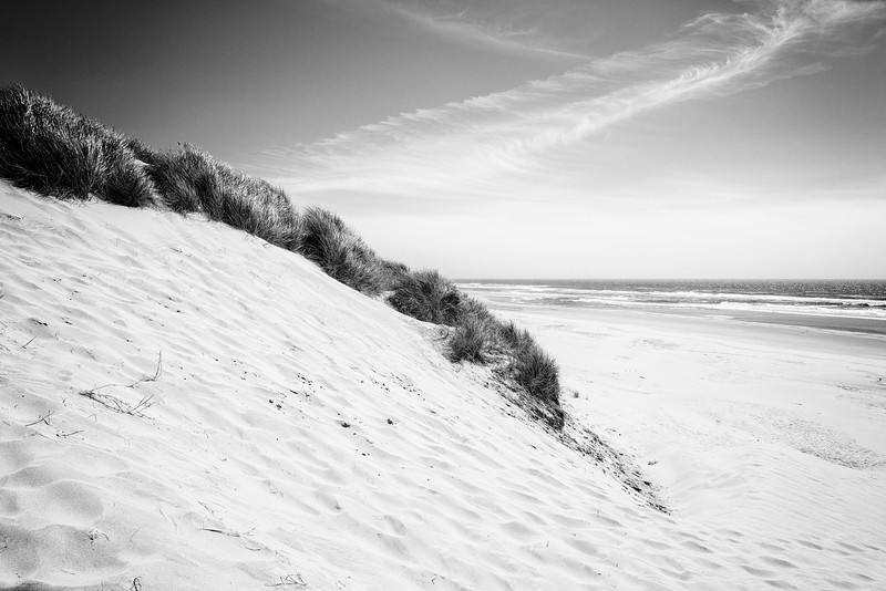 Oregon Coast Dunes