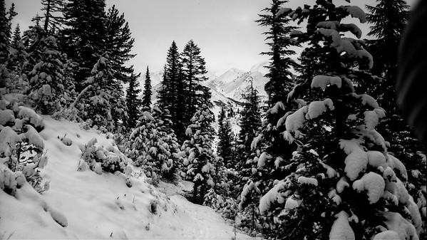 White River to Timberline Lodge © Chiyoko Meacham