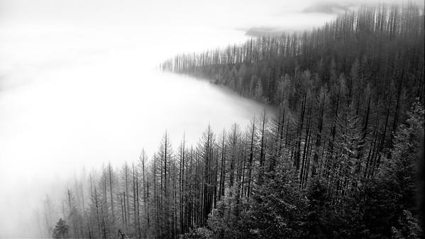 Multnomah Basin Loop © Chiyoko Meacham