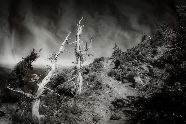 Dark & Moody On Olallie Butte