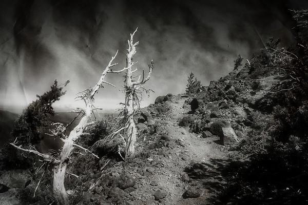 Dark & Moody On Olallie Butte