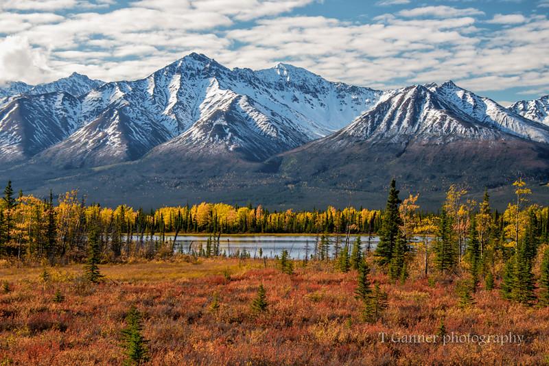 Kluane National Park, Yukon Territory, Canada