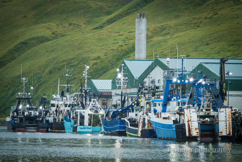 Commercial fishing for the Deadliest Catch