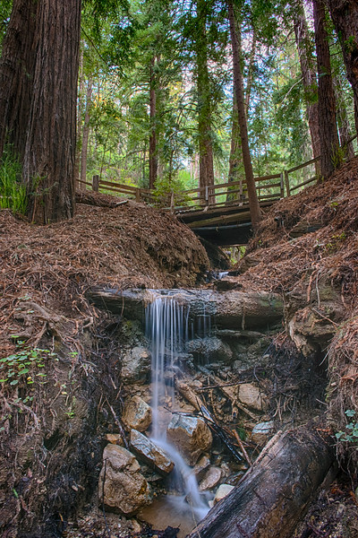 Falls along the creek below Creek  Cabin. The bridge was built during the Second World War and would bear the weight of a tank.