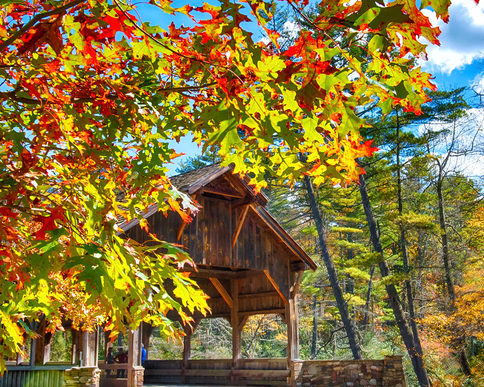 Covered Bridge; Dupont State Forest