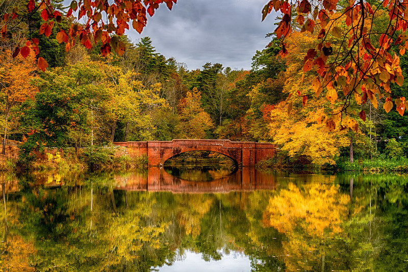 Bridge and Bass Pond reflection; Biltmore Estate