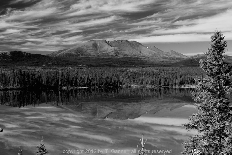 Reflections along the South Klondike Highway