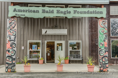 American Bald Eagle Foundation House Posts