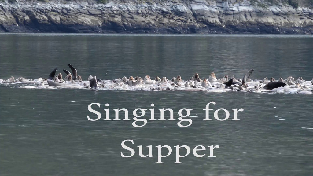 Video Clip - Singing for Supper