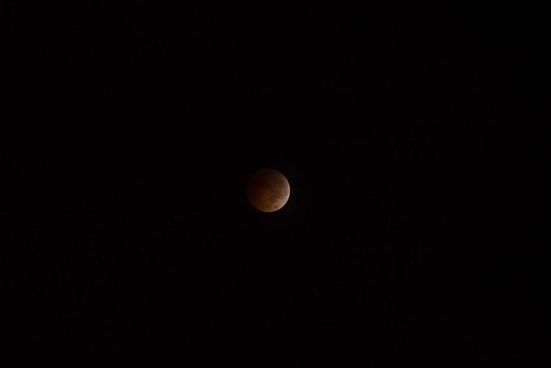 bloodmoon-12.jpg