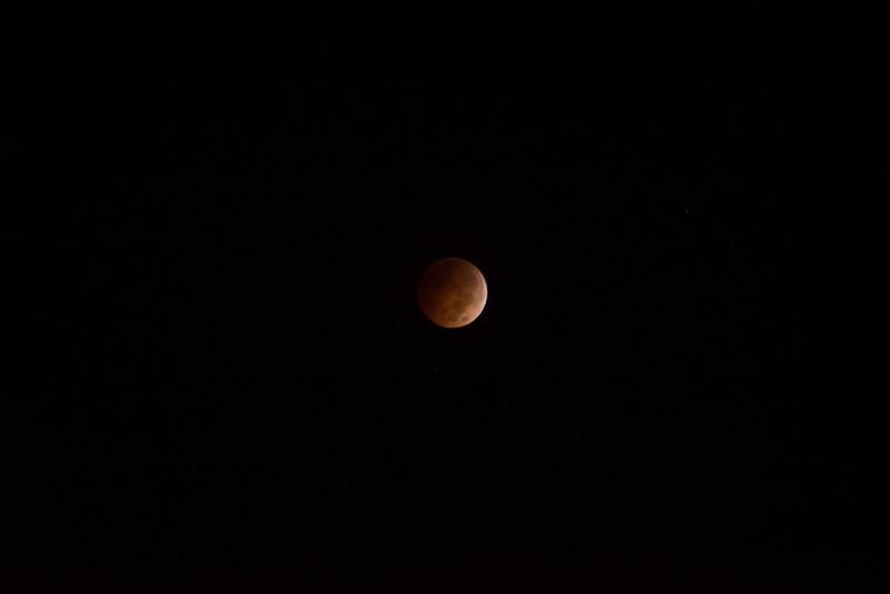 bloodmoon-14.jpg