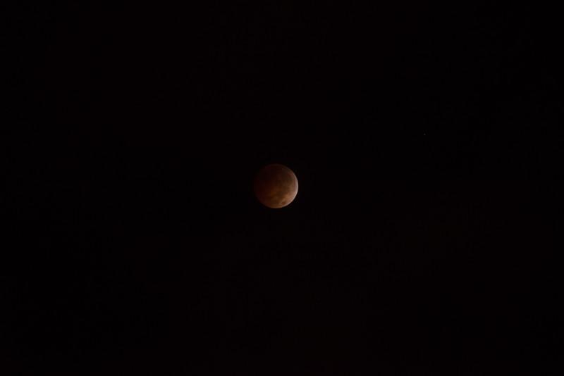 bloodmoon-13.jpg