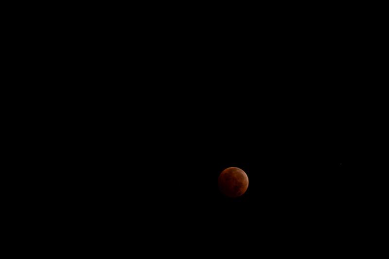 bloodmoon-20.jpg
