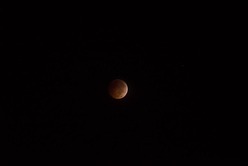 bloodmoon-11.jpg