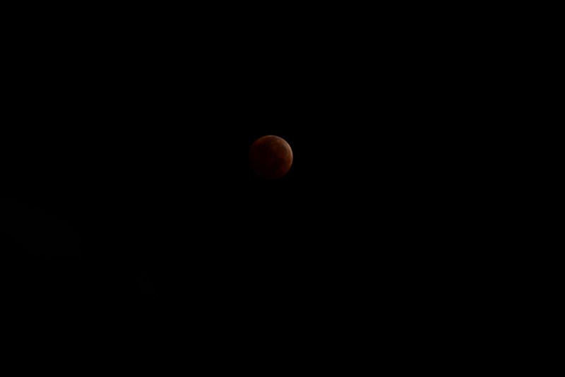 bloodmoon-24.jpg