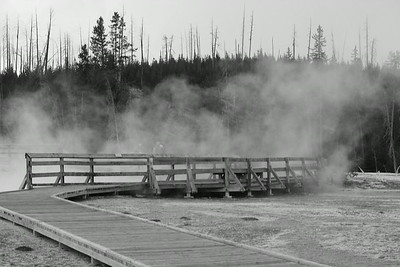 The Misty Bridge