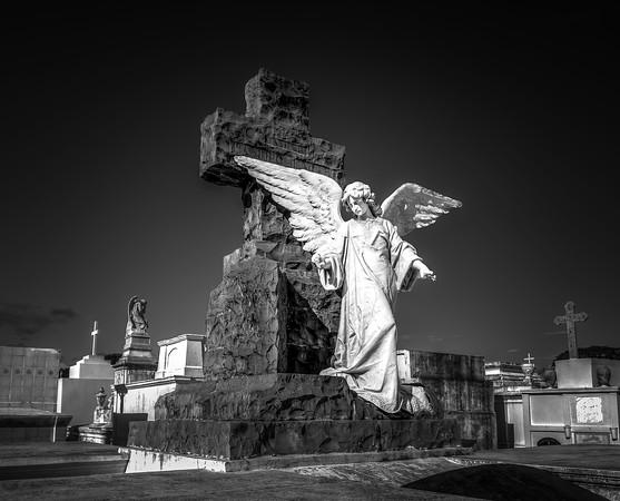 Angel  in White Darkness
