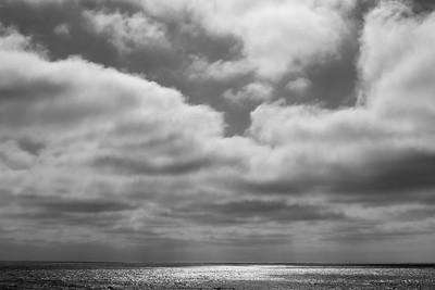 Marina Dunes Open Space Preserve, Marina, 2019.