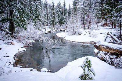 Eye Candy On Winter Hikes