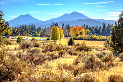 Fall Beauty In Central Oregon
