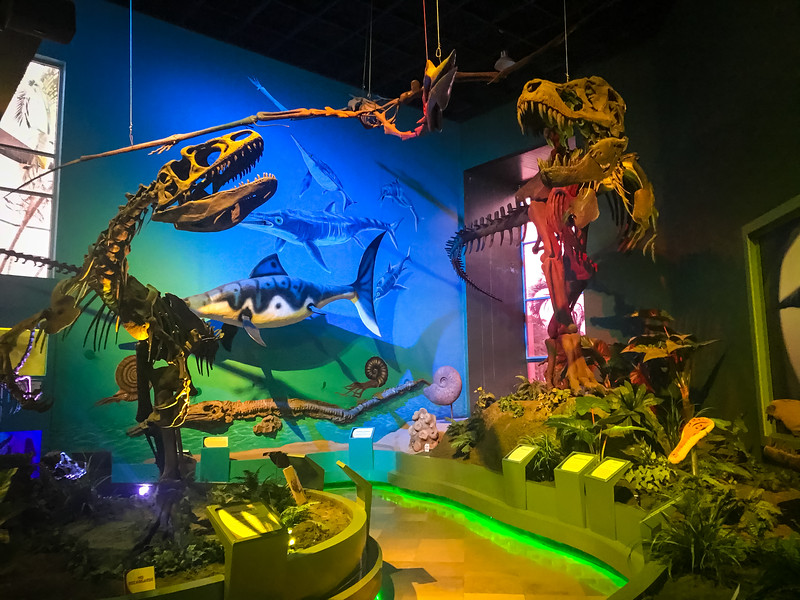 Natural History Museum next to Parque Museo la Venta