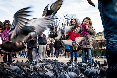 Happy children feeding the birds in La Toulirie Garden's, Paris