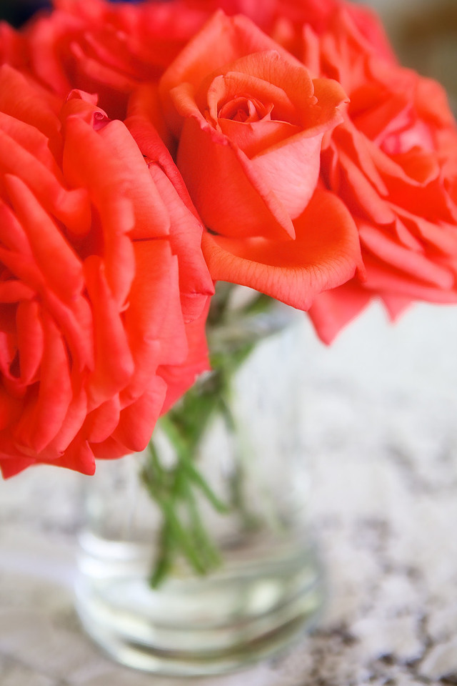 Found this great bunch of cut roses from my mom's roses at her house today.... <br /> <br /> Day 117 of 365<br /> 04-27-2013
