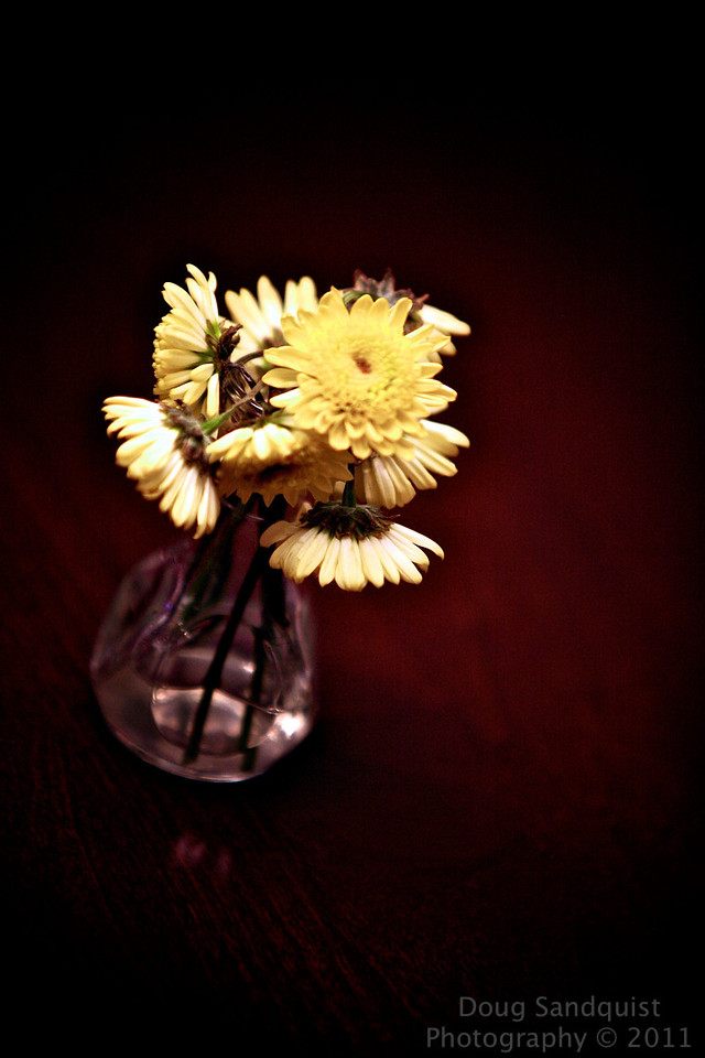 Found this cool little vase of flowers on the table tonight... It's monday and i'll I've got.... their cute though... <br /> <br /> 07-11-2011