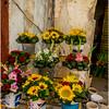 Cuba Havana Centro Havana Flower Seller 4 March 2017