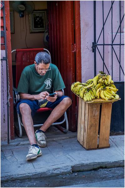 Cuba Havana Old Havana Banana Vendor March 2017