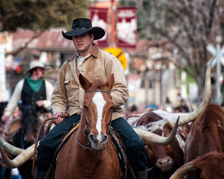 "December 31, 2011 - ""Rawhide!""<br /> <br /> This was shot two weeks ago at the Fort Worth Stockyards. (looks like it is time to get out of the way, only kidding as I was 20 meters away and standing behind a barricade)"