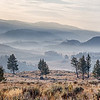 "December 30, 2012 - ""Distant Sunrise""<br /> <br /> This was shot into the rising sun in Yellowstone National Park. This pano is a merge of five images."