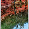 "April 2, 2013 - ""Serenity""<br /> <br /> This was shot along Oak Creek Canyon near Sedona, Arizona."
