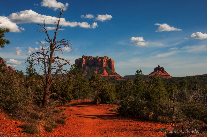 "March 24, 2013  - ""On The Trail""<br /> <br /> This was shot last week at Sedona, Arizona."