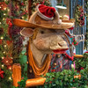 "December 21, 2011 - ""Christmas In Cowtown""<br /> <br /> This was shot Sunday at the Ft. Worth Stockyards."