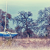 """December 16, 2010 - """"Better Days""""<br /> <br /> Yesterday we went to a marina on Lake Grapevine to shoot some photos.  A beautiful 75 degree day was enjoyed but strong winds did not provide any sailboat or still water reflection shots.  The small white caps and murky water in the marina just did not work, so I thought I would post this land shot."""