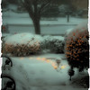 """December 24, 2010 - """"Merry Christmas""""<br /> <br /> This was Christmas Eve last year as seen from our front door shortly after 5pm. This was the start of a heavy Texas snowfall and ice that caused the cancellation of church services that evening."""