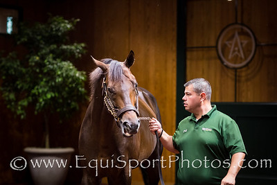 Super Saver at WinStar 9/11/13