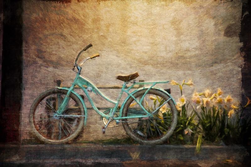 Cypress Bike