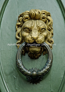 Found on a large  double door behind the Duomo in Florence, Italy.(2011)  These lions head door knockers are at least a foot tall and hang some 6 feet off the ground.