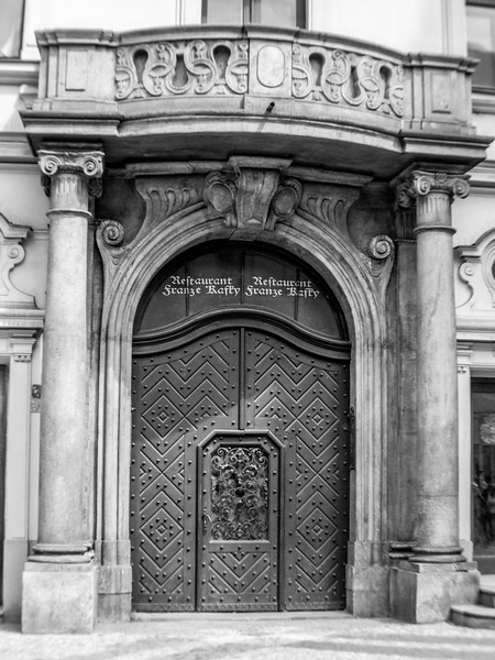 Impressive Gate with Door
