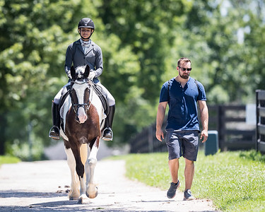 Oreo & Jessica in the KDA Dressage Show at the Kentucky Horse Park 7.07.18.