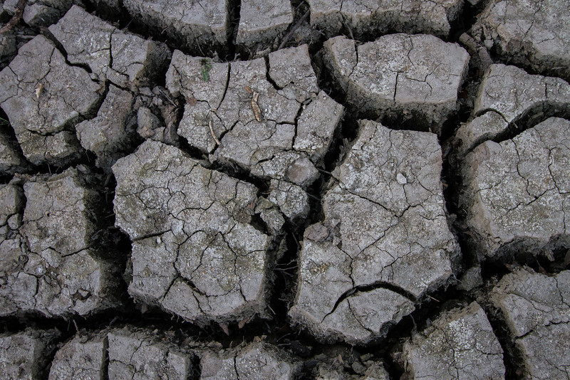 Drought #23: Cracked Earth