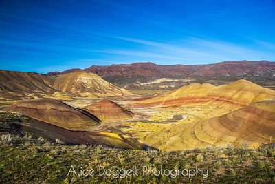 """Lunar,"" Painted Hills, OR"