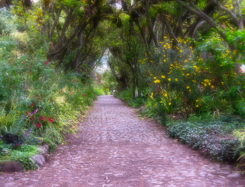 Pathway to ...