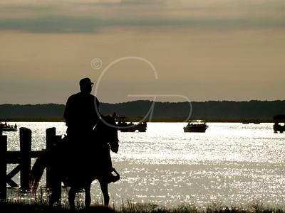 Saltwater Cowboy,  Chincoteague Island, VA