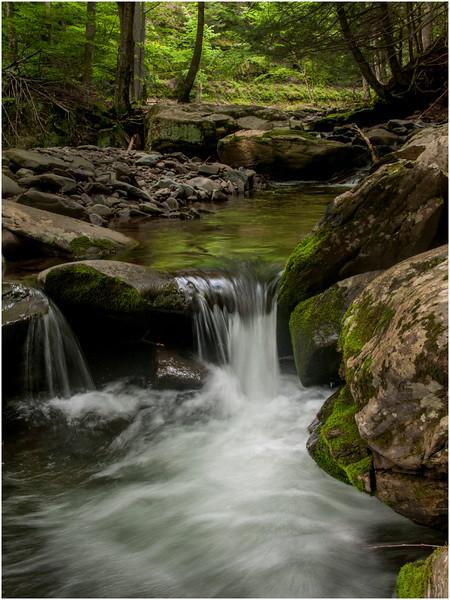 New York State June 2009 Kaaterskill Falls Stream 3