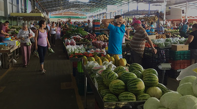 Feria - Farmers' Market