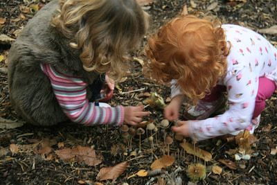 """""""Don't touch those!"""" ...the voice of a parent ruining childrens' joy in a forest in England."""